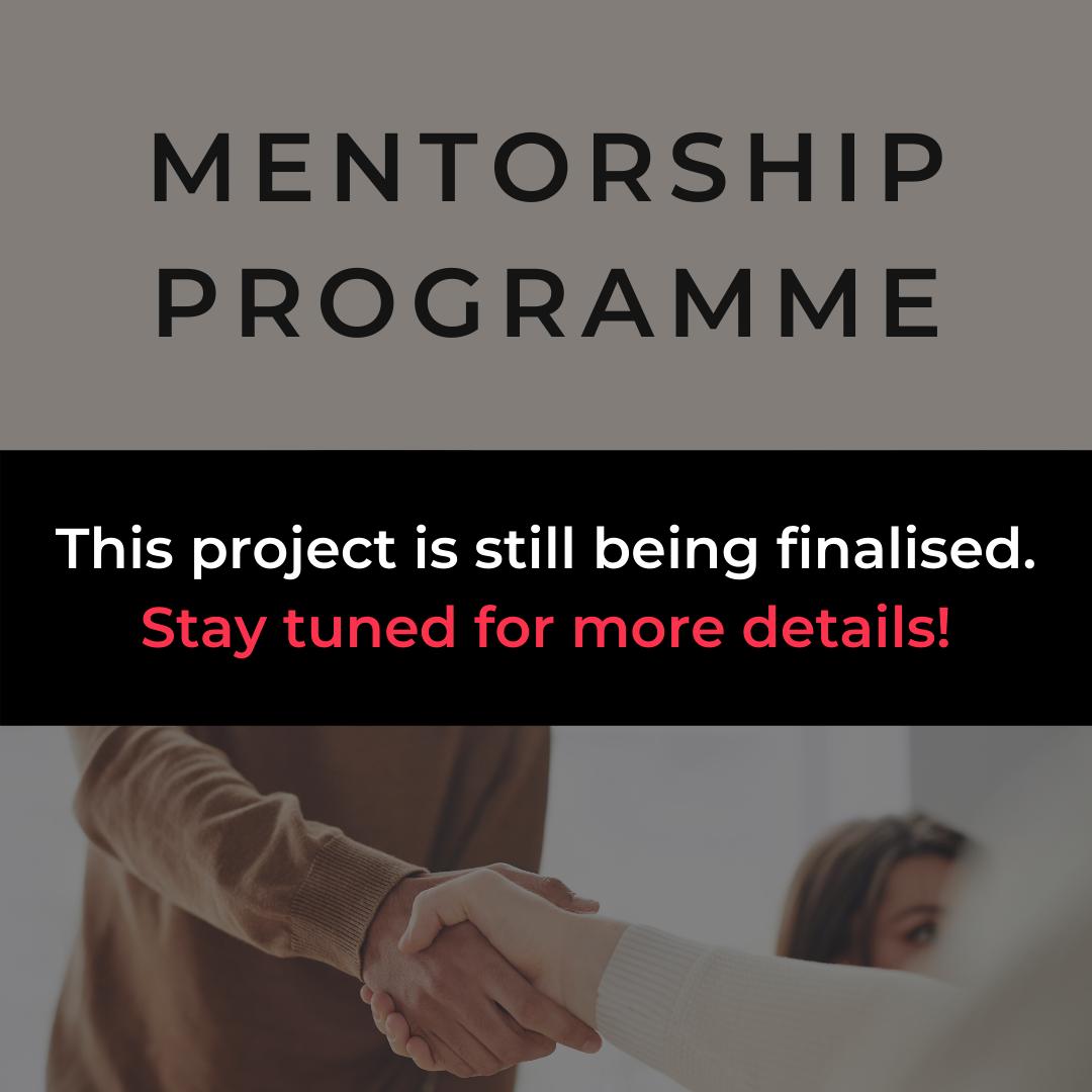 mentorship program in progress